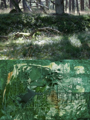 Natura vs Kultura 13 70x100